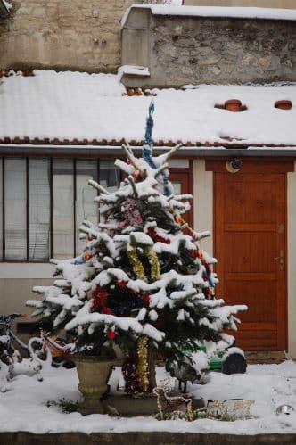 Sapin de Noel sous la neige
